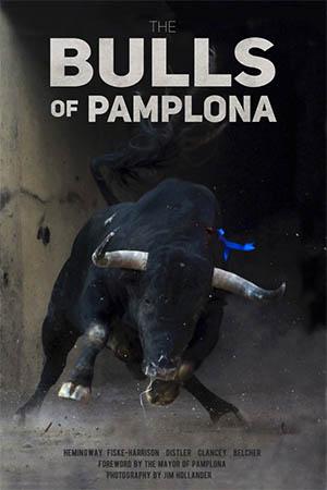 bulls-of-pamplona